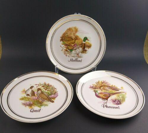 Vintage 3 Plate Set Mallard Duck Pheasant Quail Porcelain UGC Norleans Japan