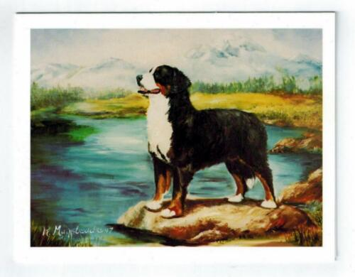 New Bernese Mountain Pet Dog By Stream Notecard Set - 6 Note Cards Ruth Maystead