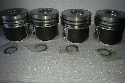 New Bf4m1011f Set Of 4 Piston For Deutz Bobcat 863 873 Gehl Diesel Raco Carlton