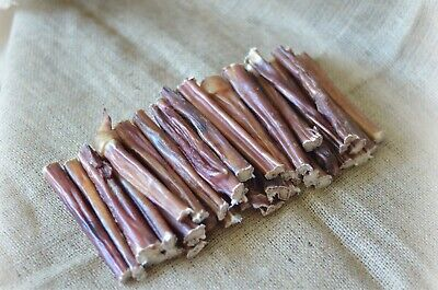 Best Bully Sticks For Dog Chews Beef Pizzle Dog Treat Natural 40 pcs 6