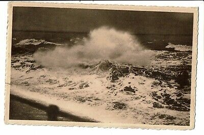 CPA-Carte postale--Belgique - Wenduine - Storm -1950  - VM752