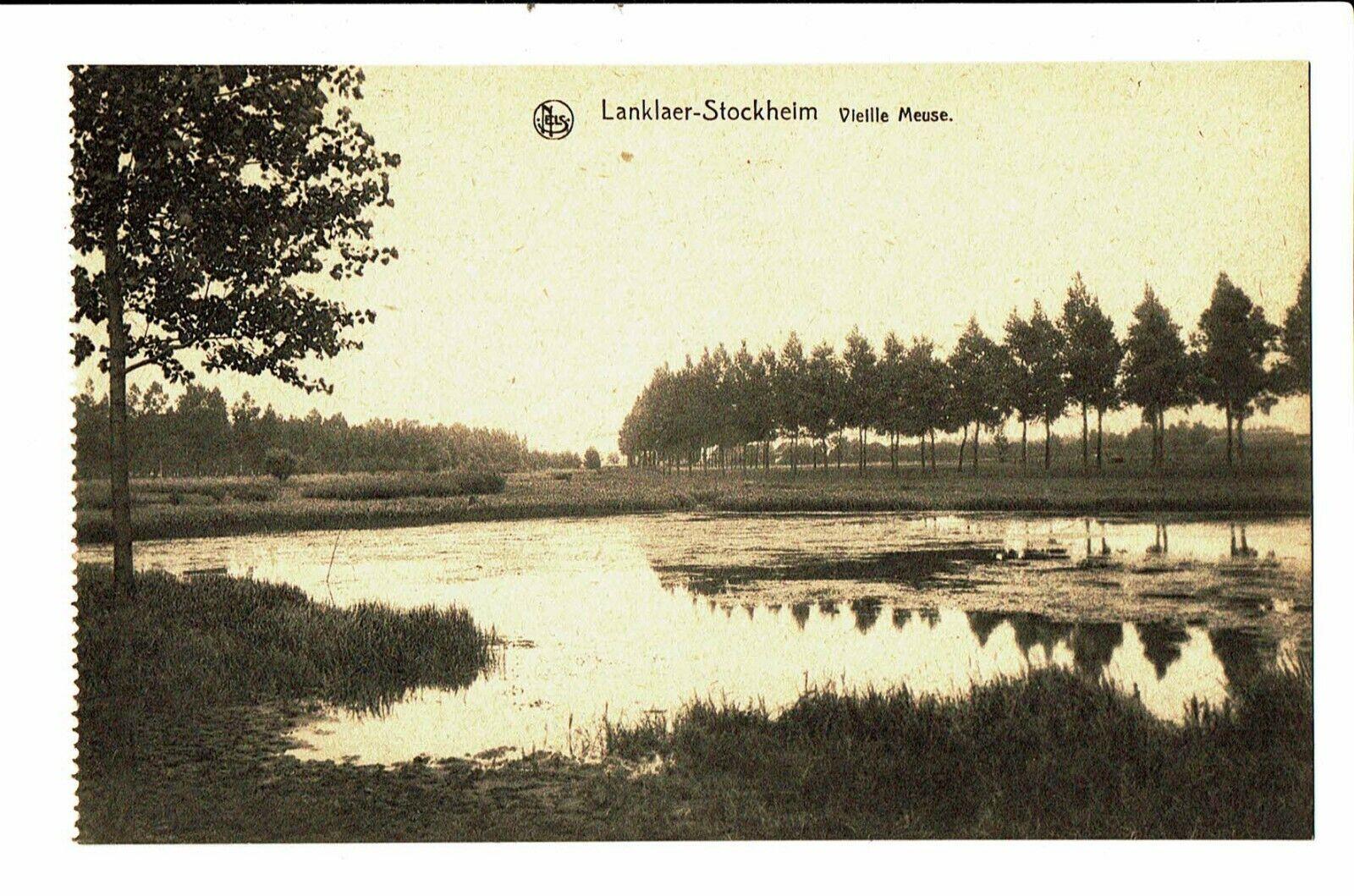 CPA - Carte postale-Belgique Lanklaer-Stockhelm Le hêtre noir renommé du Viervel