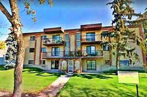 CHARACTER 2-BDRM CONDO W/ PARKING IN CENTRAL McDOUGALL