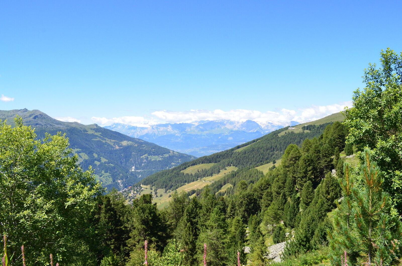The Alpine Chalet