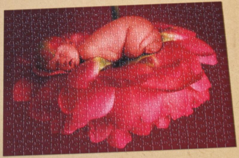 Baby Pfingstrose, Schmidt Puzzle, 500 Teile, ***sehr gut***