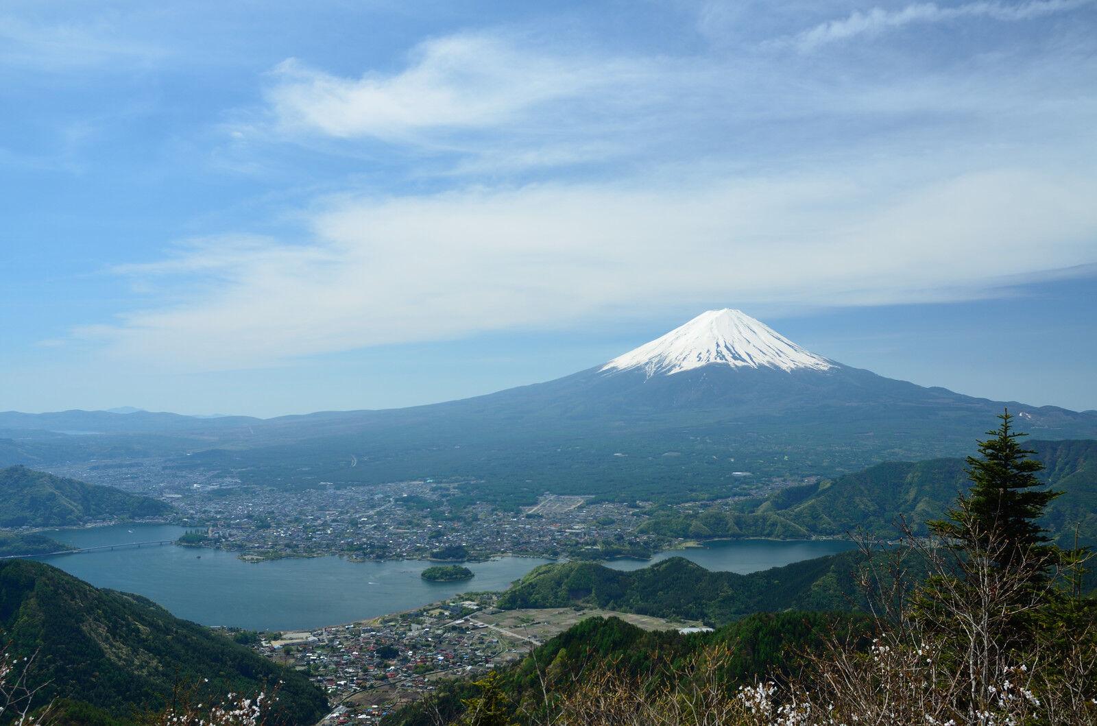 Japan_Provider