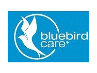 Care Worker / Care Assistant / Support Worker
