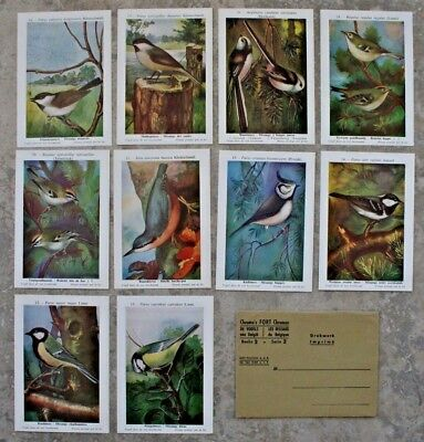 10 Birds Of Belgium Prints in Envelope - Probably from early 1960s