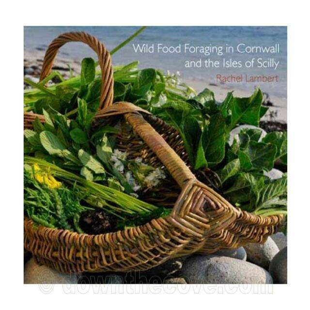 Wild Food Foraging in Cornwall & The Isles of Scilly - Pocket Guide Book