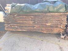TIMBER SLABS FOR SALE! Make an offer! Maroochydore Maroochydore Area Preview