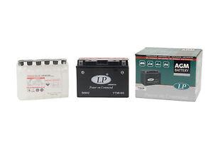 Batteria-Mg-LP-senza-manutenzione-MALAGUTI-Password-250