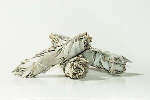California White Sage Smudge Incense Mini 4