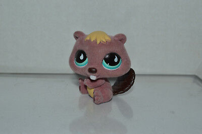 (Littlest Pet Shop~#810~Fuzzy Beaver~Plum Yellow~Brown Tail~Aqua Teardrop Eyes)