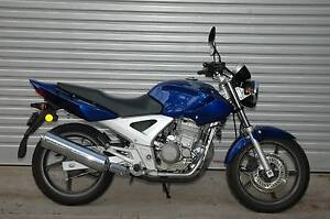 Honda CBF250 with 6 month warranty, serviced, tidy learner bike Lobethal Adelaide Hills Preview