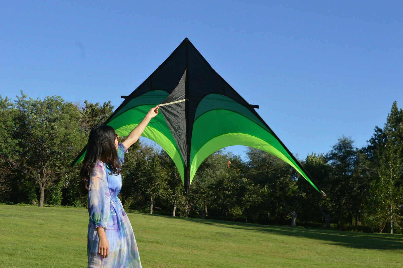Large Delta Kite For Kids And Adults Single Line Easy Fly To