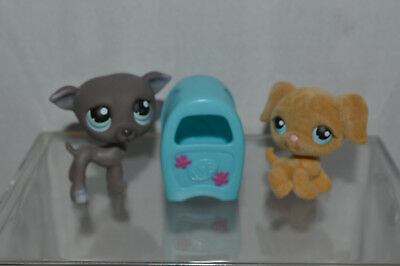 Littlest Pet Shop~#319~Greyhound~Dog~#320~Fuzzy Golden Retriever~Blue Mailbox