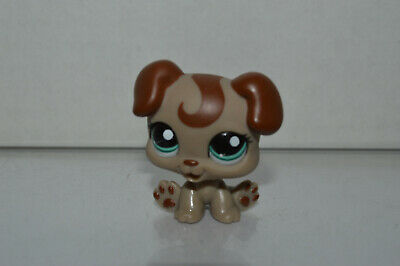 Littlest Pet Shop~#1197~Baby Boxer~Dog~Gray Brown~Brown Swirl~Green Dot Eyes for sale  Fort Worth