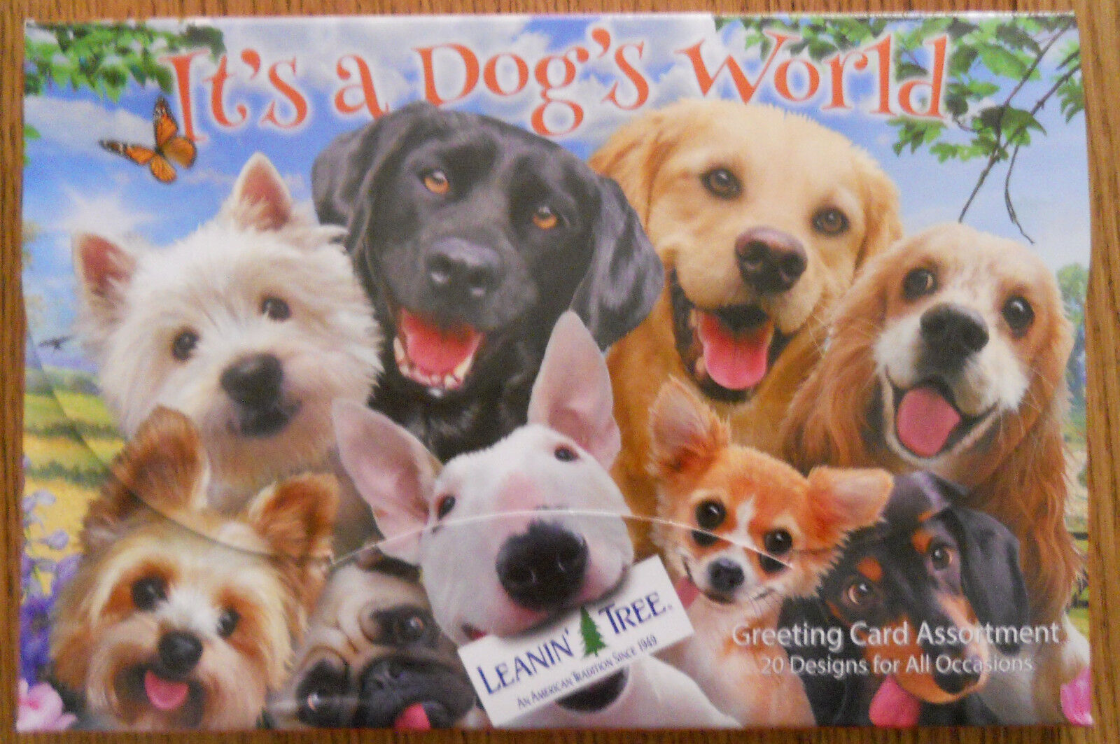 20 Leanin Tree Greeting Box Cards Set Its A Dogs World Puppies