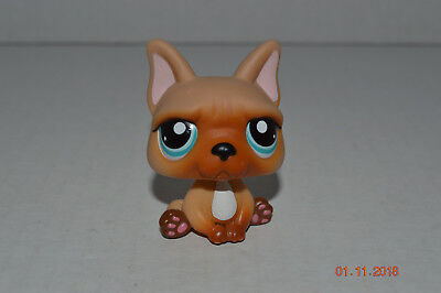 Buy and sell Littlest Pet Shop~#1847~French Bulldog~Puppy products