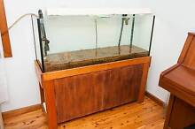 Fish tank Aquarium with cabinet four foot with all accessories Mount Kuring-gai Hornsby Area Preview