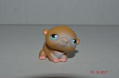 Littlest Pet Shop  45 First Guinea Pig Hamster Baby Tan White Aqua Dot Eyes