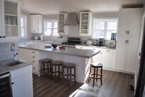 Custom Kitchens and built in cabinets