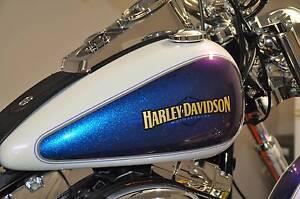 HARLEY DAVIDSON FXSTC Softail Custom Derwent Park Glenorchy Area Preview