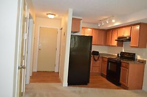 Renovated One Bedroom Apartment Available - Call 306-314-2035