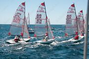 Tasar sailing dinghy Vaucluse Eastern Suburbs Preview