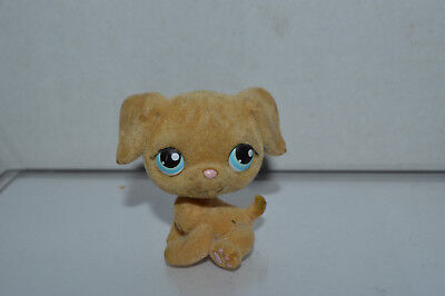 Littlest Pet Shop~#320~Golden Retriever~Beige Fuzzy~Puppy Dog~Blue Dot Eyes