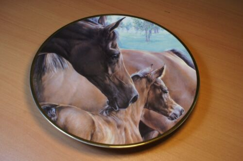 Young Hopefuls Horse Plate by DAWN ELAINE MACPHERSON Mare with Foal