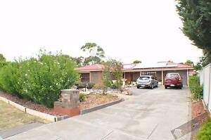 MORPHETT VALE - OPEN 08/12/2016 @ 5pm Morphett Vale Morphett Vale Area Preview