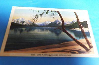 Lake McDonald Glacier National Park, MT Montana Vintage Postcard #8000
