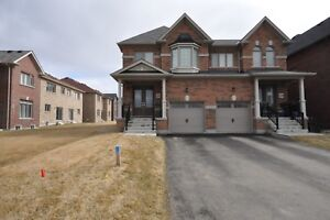 House for rent Newmarket