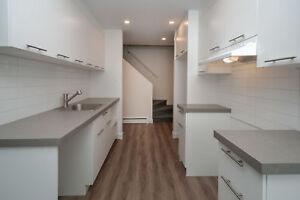 4.5 à louer Place Chamonix - 1175, rue Chamonix, suite 104 - Qué