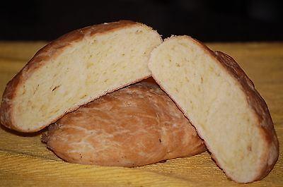 Gluten Free SOURDOUGH BREAD STARTER yeast San Francisco (SAMMY)  plus recipes