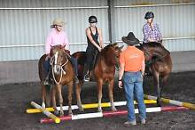 APRIL CARLOS TABERNABERRI HORSEMANSHIP CLINIC IN PORT STEPHENS Newcastle Area Preview