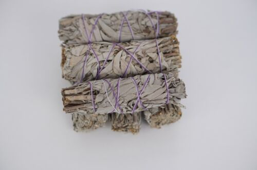 White Sage Smudge for Smudging, Meditation, Cleansing 6 Sticks  from California