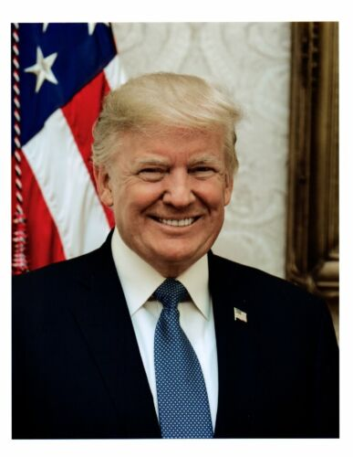 President DONALD TRUMP 8.5 x 11 Photo Picture OVAL OFFICE WHITE HOUSE PRINT