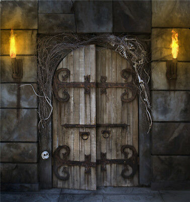 6X9ft Vinyl Halloween Theme Dungeon Door Flaming Torches Photography Background](Desktop Backgrounds Halloween Theme)