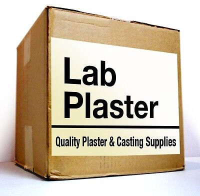 Dental Lab Plaster - Type Ii - Fast Set - 20 Lb For 29.90 - Free Fast Shipping
