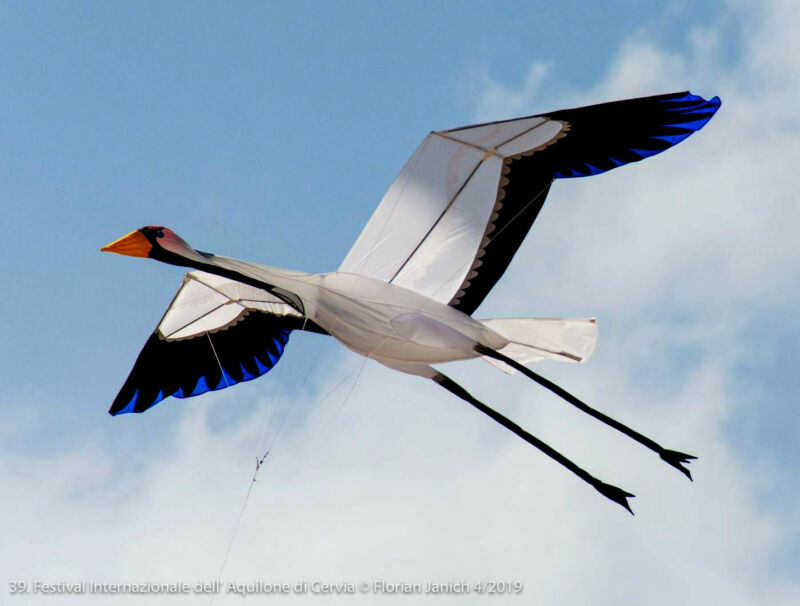 Hand Signed and Numbered Whooping Crane Kite by Joel Scholz