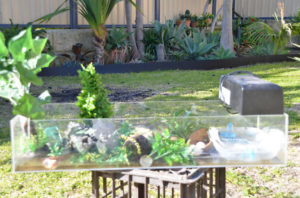 Crazy crab tank with light and accessories Joondalup Joondalup Area Preview