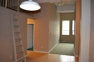 1 BD Loft Suite - On Adelaide St at Dundas St  December 1
