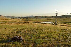 40 acre bush block near Gunning Strathfield Strathfield Area Preview