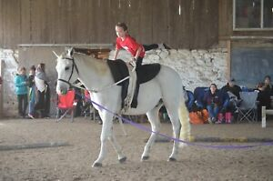Interested in hosting a Vaulting clinic?