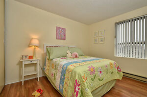 SPACIOUS SUITES WITH EXTRA STORAGE! London Ontario image 6