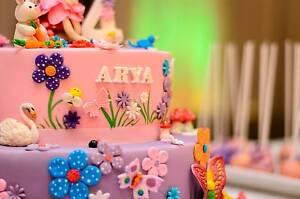 A&S Photography: for Stunning Birthday parties and Events Parramatta Parramatta Area Preview