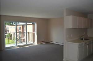 One Bedroom APT - Huron St at Adelaide St - Heat Included - Pool