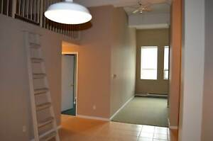 1 BD Loft Suite - On Adelaide St at Dundas St